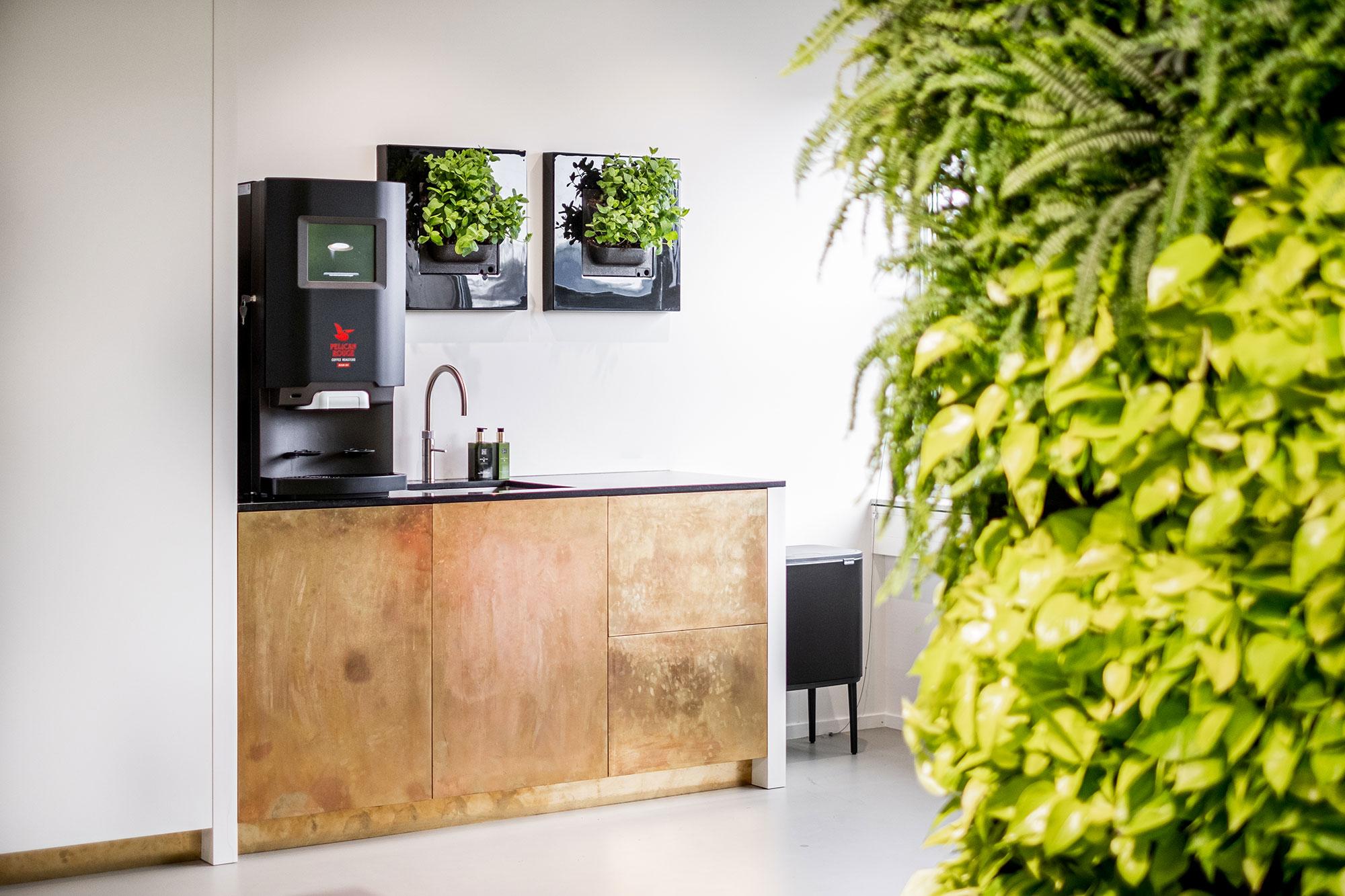Mobilane-HQ-LivePicture-GO-Kitchen-with-mint-plants